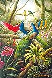 tzxdbh (30x40cm) Kein Rahmen Vintage abstrakte Ölgemäldeklassische Papagei Pfau Dschungel Blume Landschaft Beste Geburtstagsgeschenke für Freunde