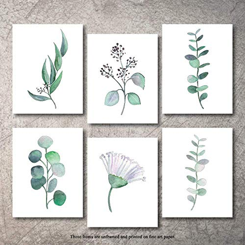 Botanical Prints Wall Decor - Kitchen Art Eucalyptus Leaves Set UNFRAMED Pictures 6 PIECES Nature Floral Plant Flower Green Small Botanical Prints Wall Art Vintage Print looking Poster (5x7)