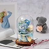 Blusa de rosa eterna bajo campana de cristal con luz LED y base, flor artificial, regalo para el día de la madre, San Valentín, bodas, cumpleaños, Navidad, color azul