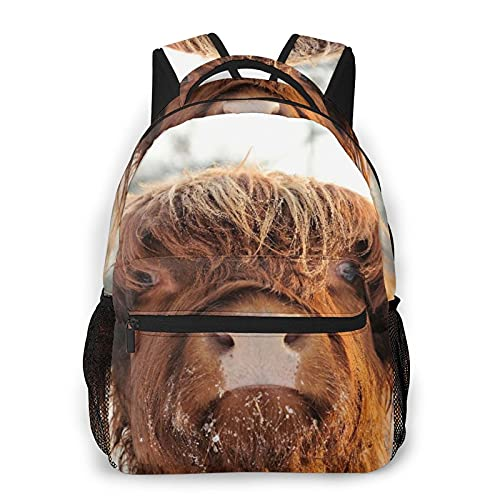 Travel Laptop Backpack,Cow Fold Hair Snow Face Nose Horned Closeup Pasture Scottish Cattle Nature Bull Highlander Rural,Business Water Resistant Anti Theft Computer Daypack Slim Durable School Bookbag