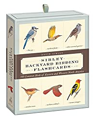 Sibley Backyard Birding Flashcards: 100 Common Birds of Eastern and Western North America