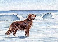 数字で描くキットアイリッシュセッターの犬とブラシとアクリル絵の具大人のためのDIYキャンバス絵画初心者の静物