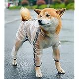 犬 レインコート レインポンチョ 犬服 カッパ 小型犬 中型犬 着せやすい 雨の日 お散歩 お出かけ 梅雨対策 フード付き 透明 (M)