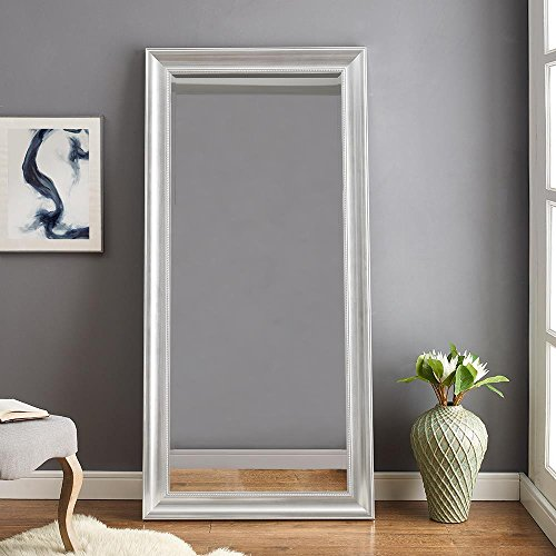 "Naomi Home Beaded Framed Leaner Mirror Silver/66"" x 32"""