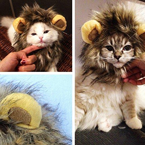 Funny PET CAT Costume Lion Mane peluca sombrero con orejas para perro o gato