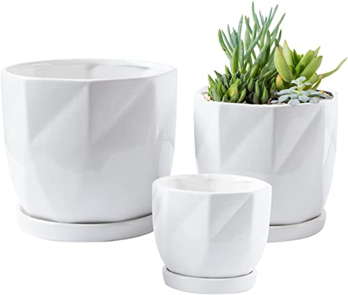 popular Royal new arrival Imports Flower Pot Ceramic Vase, Decorative Planter for Indoor Outdoor Garden Windowsill, with Saucers and Drainage Hole, White, popular Set of 3 outlet online sale