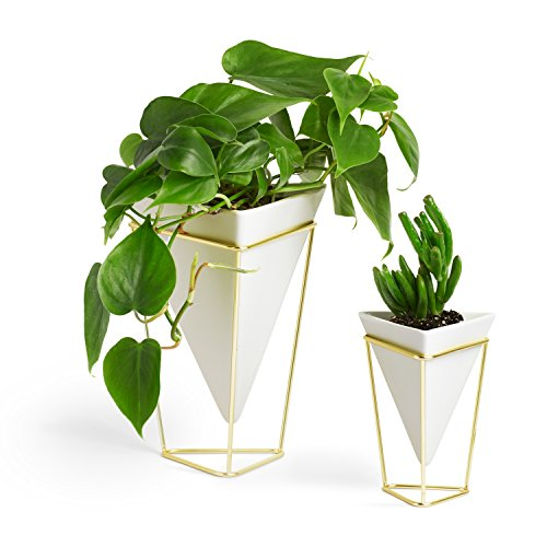Umbra 1004372-524 Trigg Desktop Planter Vase and Geometric Container, White Ceramic/Brass, Set of 2