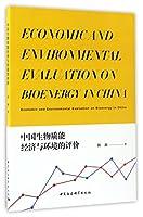 中国生物质能经济与环境的评价