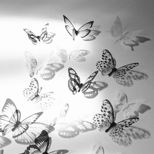 New12pcs 3D Butterfly Wall Stickers Art Decal Home Room Decorations Decor (Black & White)
