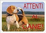 Cartello 'Attenti al Cane' con beagle, cm 30 x 21,5