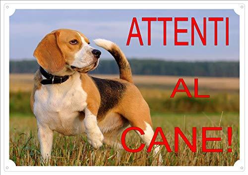 Cartello Targa'ATTENTI AL CANE' da Cancello BEAGLE cm 30 x 21,5