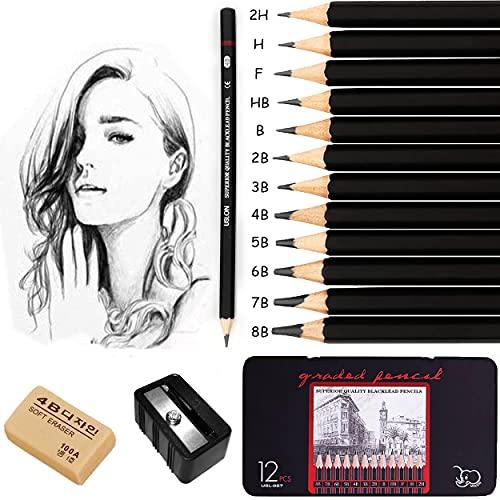 Bleistifte Set für Anfänger, Surcotto 12 Stück Professionelle Zeichenstifte mit 1 Spitzer,1 Radiergummi 8B 7B 6B 5B 4B 3B 2B B HB F H 2H - Metalldose