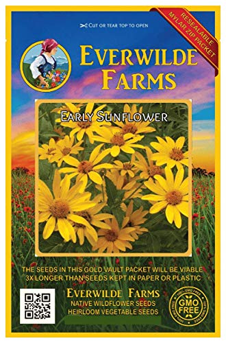1000 African Daisy Wildflower Seeds Everwilde Farms Mylar Seed Packet
