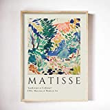 Henry Matisse arte pecera pintura cartel abstracto mujer cara pared arte lienzo pintura moderno sin marco lienzo pintura E 50x70cm