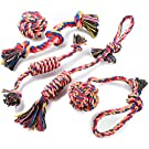 Squeaky Dog Toys for Dogs - TOYSBOOM Stuffed Plush Dog Toys for Small Medium Dogs, Tough Durable Dog Chew Toys