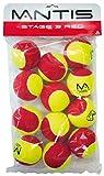 Mantis Fase 3Fase Tennis Ball (Confezione da 12)–Rosso