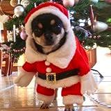 StillCool Hundemantel Hung Winter Jacken Mantel Hundekostüme Weihnachtsengel Flügel Weihnachtsmannkostüm für Hunde