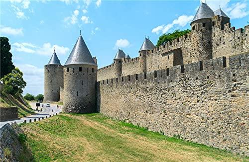 NA Puzzle Jigsaw Puzzle De 500 Piezas para Niños Adultos France Fortress Roads Carcassonne Wall Juego De Juguetes Educativos para Niños