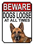ALL BREEDS - BEWARE DOGS LOOSE AT ALL TIMES METAL SIGN GERMAN SHEPHERD 200MM X 150MM (998H1)