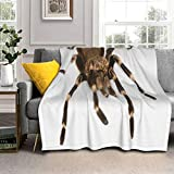 Sherpa Fleece Throw Blanket Cool Mexican Red Rump Tarantula On White Warm Cozy Plush Blankets Fuzzy Fluffy Fur Soft Microfiber Comforter Blanket for Couch Bed Sofa Fall Camp Travel Chair Nap 50x60in