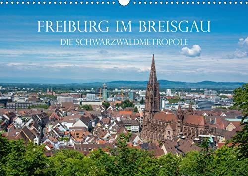 Freiburg im Breisgau - Die Schwarzwaldmetropole (Wandkalender 2021 DIN A3 quer)