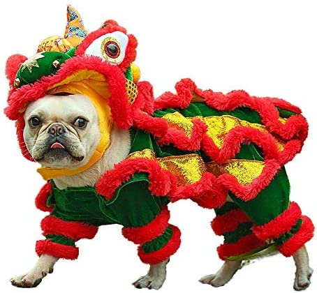 Chinese dragon dog costume _image0