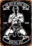 Forry Martial Arts Muay Thai Metall Poster Retro