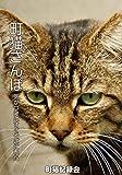 町猫さんぽ ねこPIX (KNOフォトブックス)