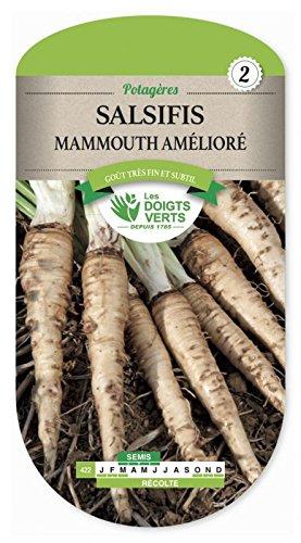 Les doigts verts Semence Salsifis Mammouth Amélioré