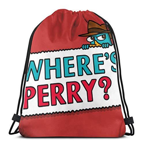 Jiadourun - Mochila de viaje unisex Wheres Perry The Platypus Phineas y Ferb