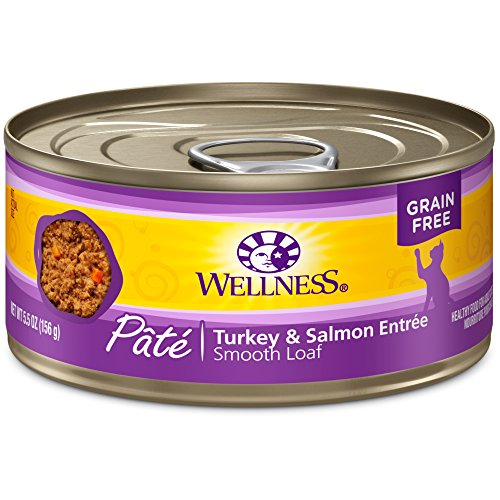 Wellness Complete Health Grain Free Canned Cat Food, Turkey & Salmon, 5.5 Ounces (Pack of 24)