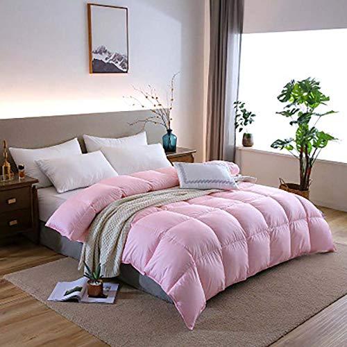 Hahaemall Winter Duvet New 95% White Goose Down Quilt Full Size Thicken Comforter Winter Duvet-Anti Allergen - Duvet Quilt-180X220Cm-3000G_Pink