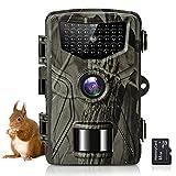 SuntekCam Cámara de caza de 36 MP 2,7 K para la fauna salvaje con tarjeta SD de 16 GB fototapola para la visión nocturna por infrarrojos con LED IR 940 nm, temporizador e impermeable IP66-HC-804A