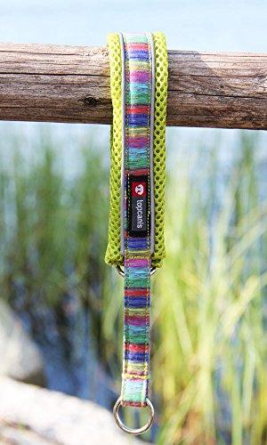 FinNero Haustierprodukte, Finnland - Nordic Lights. Weiches, gepolstertes Hundehalsband aus Netzstoff (3 (40-50 cm), Limette)