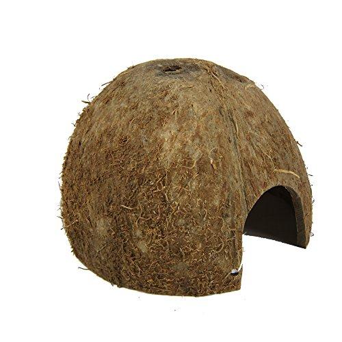 JBL 61511 Kokosnuss-Schale als Höhle für Aquarien und Terrarien, Cocos Cava 1/2 M