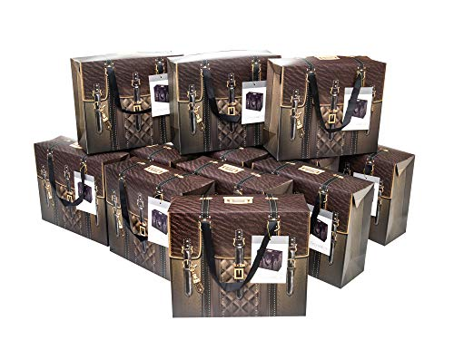 Gift Bags with Lid for Party Favors Brown Large (Pack of 12)