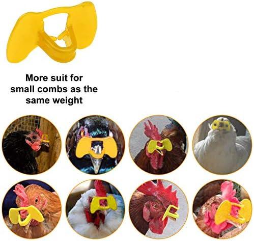 Chicken glasses _image1