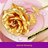 Immagine 2 mfb regali di rose real