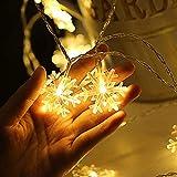 Schneeflocke Lichterketten, 6M 40Pcs LED Batteriebetriebene Lichterketten, Shining Decoration Lightning für Valentinstag Weihnachten Hochzeit Geburtstag Party Schlafzimmer Indoor&Outdoor (Warm White) - 2
