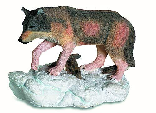 Dekofigur Wolf auf Schnee 5/6,5/3,5 cm