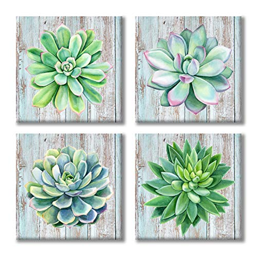 Paimuni Succulents Canvas Wall Art Watercolor Hand-Drawn Green Leaf Plants Printings Ready to Hang Wall Decor Botanical Giclee Prints 12x12inchesx4pcs