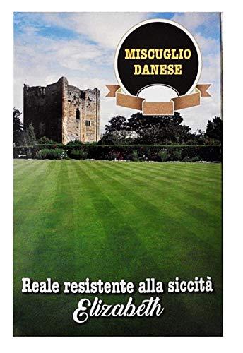 Mélange royal danois - 1 kg - résistant à la sécheresse - elizabeth - pelouse semi - agricole - idée de cadeau original de jardins décoratifs - excellente qualité