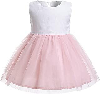 Fairy-Baby Kids Girls Sleeveless White Top Mesh Pink Tulle Tutu Princess Dress Party