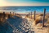Artland Qualitätsbilder I Wandtattoo Wandsticker Wandaufkleber Olha Rohulya Weg zum Nordseestrand in Gold Sonnenuntergang Sonnenschein, Nordholland, Niederlande Landschaften Strand Foto...