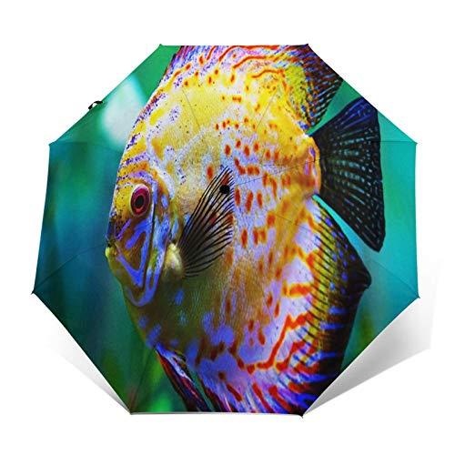 Regenschirm Taschenschirm Kompakter Falt-Regenschirm, Winddichter, Auf-Zu-Automatik, Verstärktes Dach, Ergonomischer Griff, Schirm-Tasche, Diskusfisch Aquarium