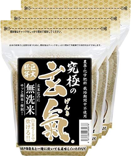 無農薬の巨大胚芽の発芽玄米 究極の玄氣 1.5kg(真空パック)×3袋