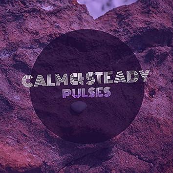 Calm & Steady Pulses, Vol. 2