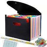 Carpeta Clasificadora, A4 Carpetas Plastico Archivador con Tapa Separadores Acordeón, Folios Colores Organizador Documentos Archivadores Papeles Documentos Clasificador