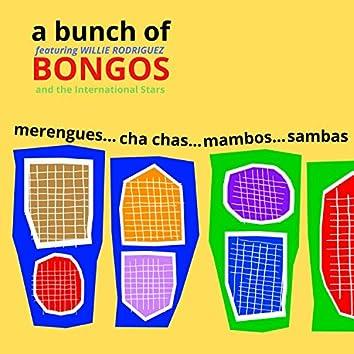 A Bunch of Bongos