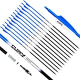 LWANO Carbon Arrow Archery 30inch Hunting Target Practice Arrows for Compound & Recurve Bow Spine 500 with Removable Tips (Pack of 12)(Blue)
